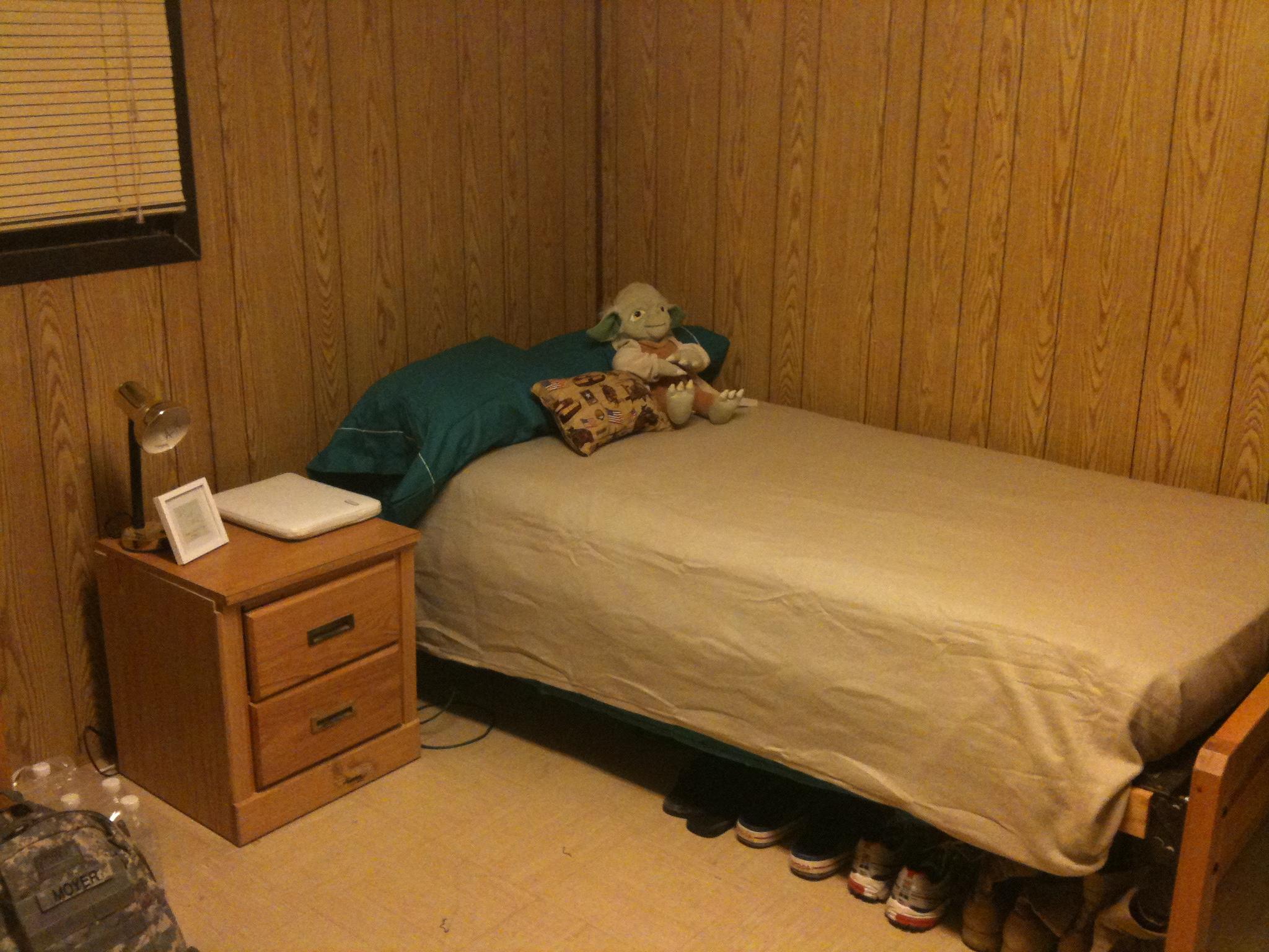 Dorm Room Dog